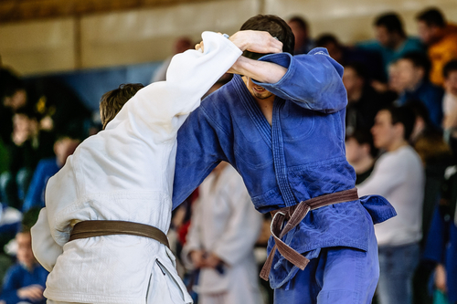 אליפות לג'ודו