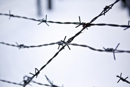 טקס יום הזיכרון לשואה ולגבורה
